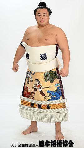 力士プロフィール - 翔猿 正也 - 日本相撲協会公式サイト