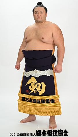 力士プロフィール - 朝乃山 英樹 - 日本相撲協会公式サイト
