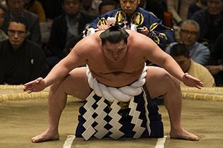 日本相撲協会公式サイト