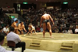 夏期相撲大会等催事 - 日本相撲...