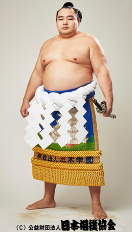 http://www.sumo.or.jp/img/sumo_data/rikishi/270x474/20010035.jpg
