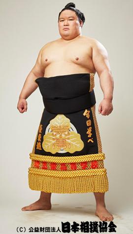 http://www.sumo.or.jp/img/sumo_data/rikishi/270x474/20050008.jpg