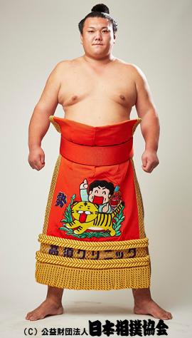 力士プロフィール - 勢 翔太 - 日本相撲協会公式サイト