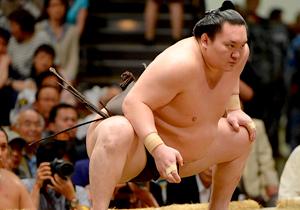 相撲 取り組み