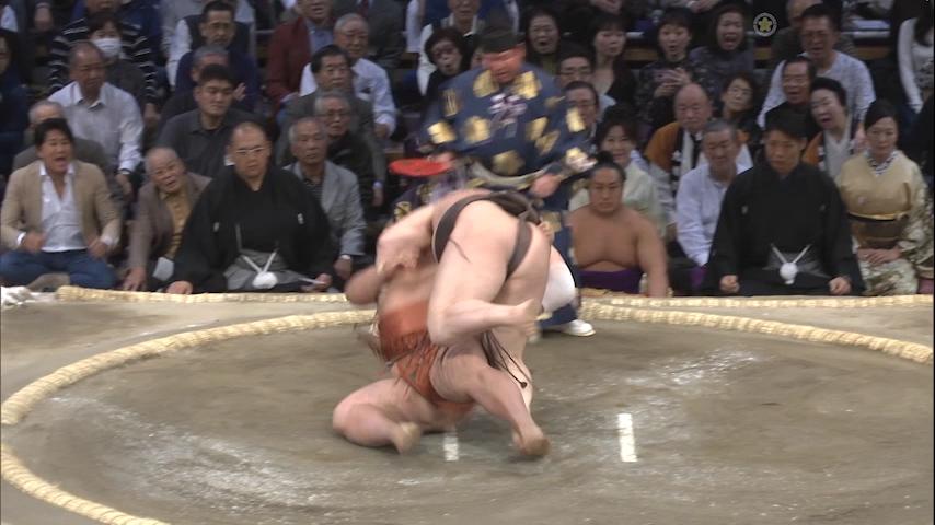大相撲動画